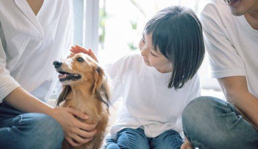 子供の成長にペットはどう関係する?