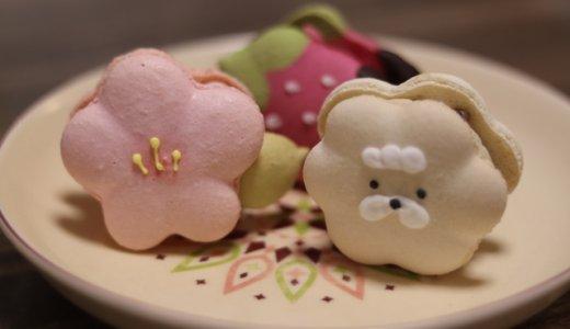 インスタ映え間違え無し!今流行りの韓国マカロン 「トゥンカロン」が食べられるカフェ3選!~東京編~